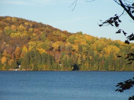 autumn leaves across a lake