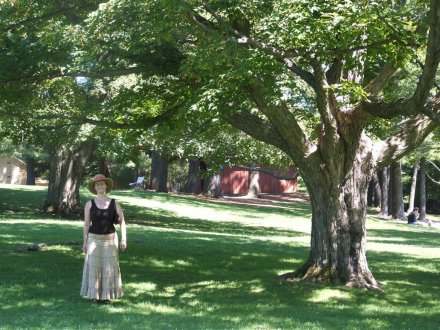woman and overhanging tree