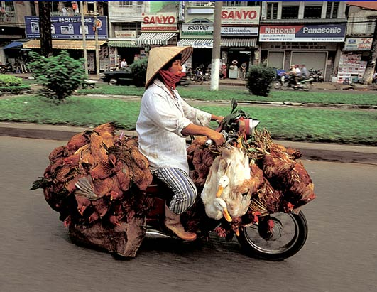 moto-vietnam-03.jpg