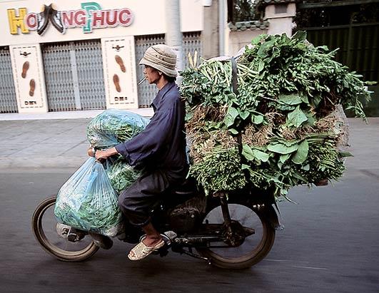 moto-vietnam-14.jpg