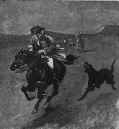 black dog giving chase