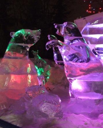 bear cubs at night