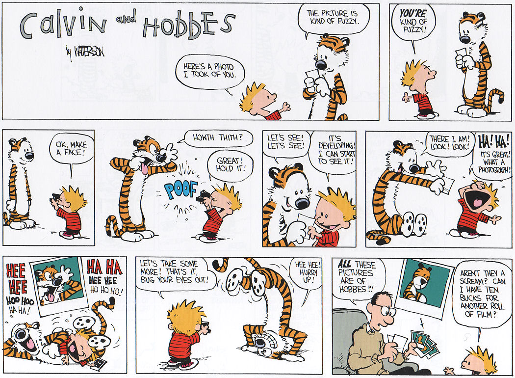 Calvin and hobes sex