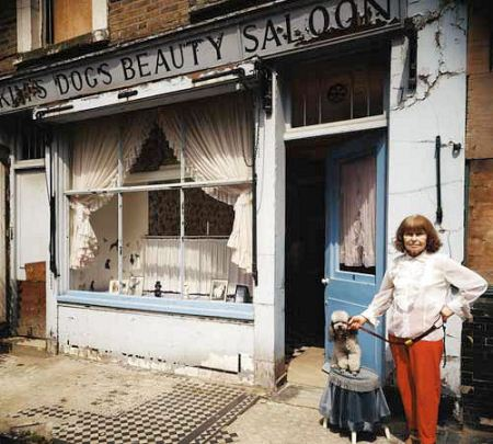 Dog's Beauty Saloon