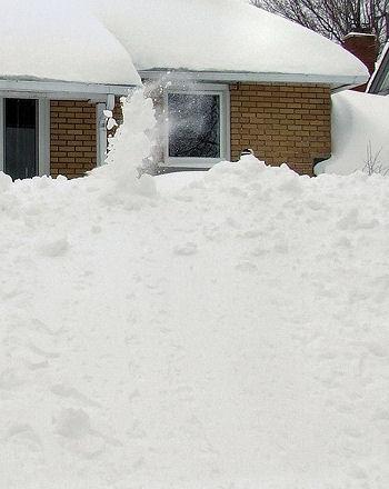 neighbour shovelling