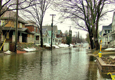 Belmont Ave., Ottawa, flooded