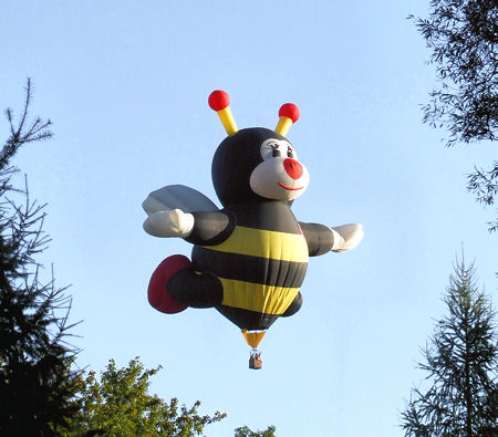 honey bee balloon_2