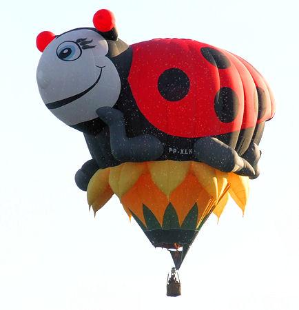ladybug balloon_2