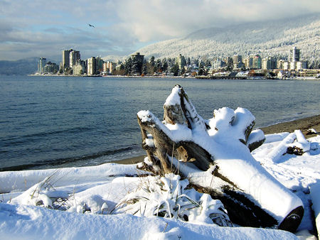 snow in vancouver november 2006 photo by flickr user ms melch all rights reserved - White Christmas Snow Song